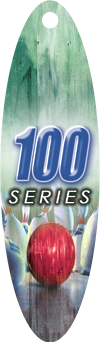 youthbowlingawards-100 SERIES